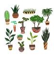 set cartoon home flowers in pots vector image