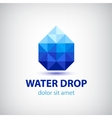crystal modern water drop logo icon vector image