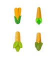 maize icon set cartoon style vector image