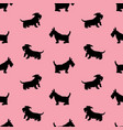 seamless pattern with black dogs silhouettes vector image