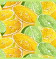 seamless pattern with citrus tree fruits like vector image