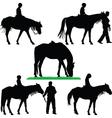 horse riding school vector image