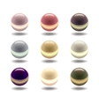 Glossy Colored Pearl Set vector image