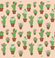 flowering cactus in pots vector image