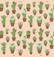 flowering cactus in pots vector image