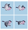 flying bullfinch female animation sprite sheet vector image vector image