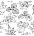 seamless pattern with branches and leaves hand vector image