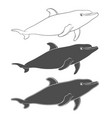 set of with a dolphin vector image vector image
