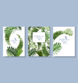 tropical leaves banners set vector image vector image