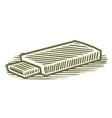 woodcut flash drive vector image vector image