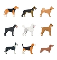 Different type of dogs breed set with Beagle vector image