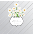 Daisy flowers and vintage label card vector image vector image