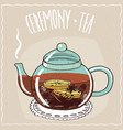 glass teapot with christmas tea vector image