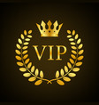 gold vip label on black background stock
