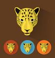 Leopard portrait with flat design