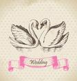 Swans wedding hand drawn vector image