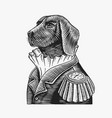 dog officer or military man in old uniform vector image vector image