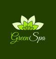 green spa leaf flower logo design template vector image vector image
