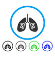 lungs rounded icon vector image