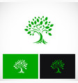 green tree ecology botany logo vector image