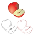 apple drawing in different styles vector image vector image