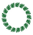 circle frame from green monstera leaves wedding vector image