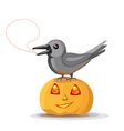 Crow on pumpkin vector image vector image