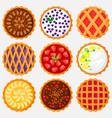 pies top view baking food delicious apple vector image vector image