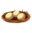 A nest with three eggs vector image vector image