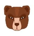 Bear cartoon icon Animal design graphic vector image vector image