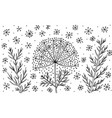 Dill - flower black and white ink