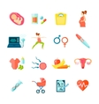 Pregnancy Icons Set vector image vector image