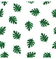seamless pattern with beautiful monstera leaves vector image