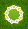 Spring freshness card with grass and camomiles vector image vector image