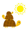 three turtle tortoise pyramid yellow sun cute vector image