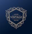 vintage luxury frame design vector image vector image
