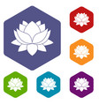 water lily flower icons set hexagon vector image
