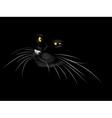 Black cat in the dark3 vector image vector image