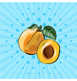 bright pop art with hand drawn peaches and half vector image