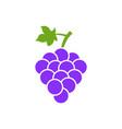 grape isolated icon grape leaf wine black vector image
