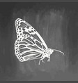 hand drawn butterfly sketch symbol isolated on vector image vector image