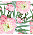 roses peony and greenery vector image vector image