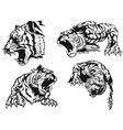 silhouette angry tiger roaring head vector image vector image