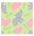 rhino and hippo pattern vector image