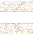 autumn leaves outline with blank banner vector image vector image