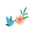 beautiful humming bird or colibri with spread vector image