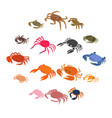 crab icons set isometric 3d style vector image
