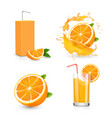 orange juice isolated icons on white background vector image