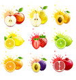 set juicy fruits with splashes juice vector image