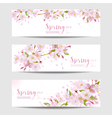 Spring Flower Banner Set - Cherry Blossom Tree vector image